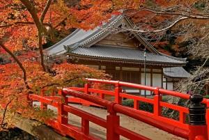 Спокойный отдых в Японии